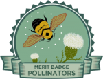 Merit Badge: Pollinators