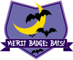 Merit Badge: Bats!