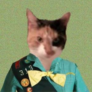 Profile picture of Cat P